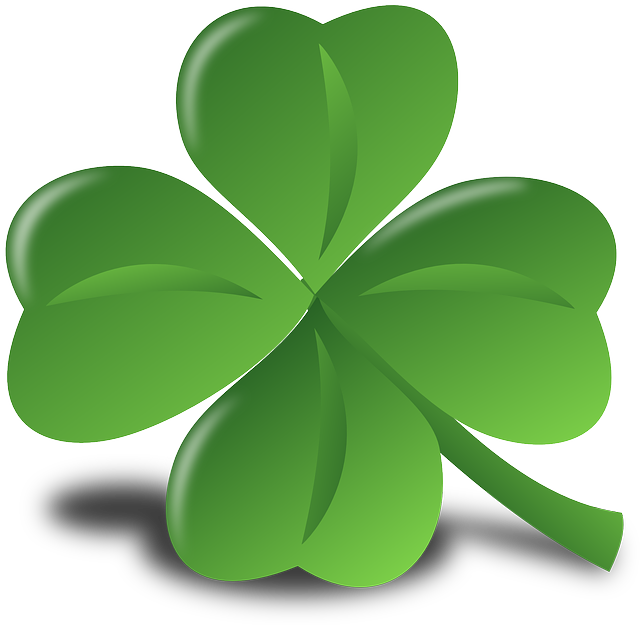 Photo of a shamrock